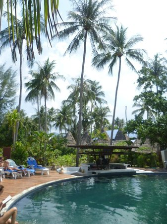 B52 Beach Resort : Poolbereich