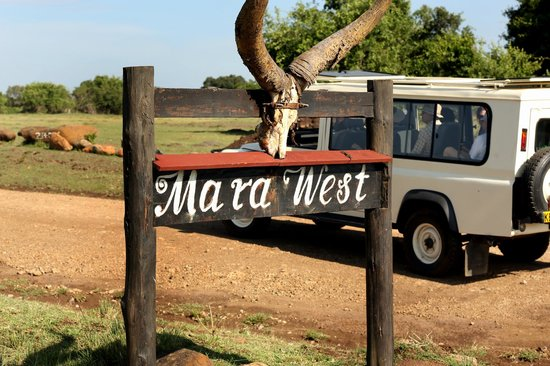 Mara West Camp: On our way out to a Safari