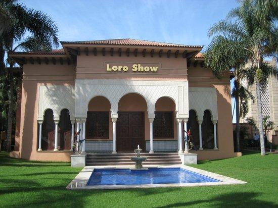 Loro Parque : дом для шоу попугаев