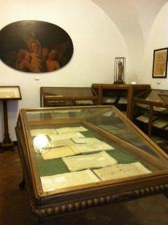 Museo Civico Belliniano : Museo Belliniano, una sala con le vetrine