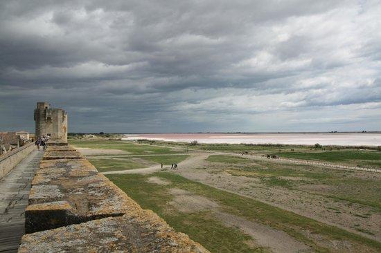 Oliveraie De Paul: Aigues Mortes - vue sur les salins depuis les remparts