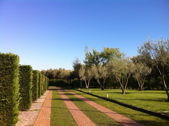 All Ways Garden Hotel & Leisure: Giardino