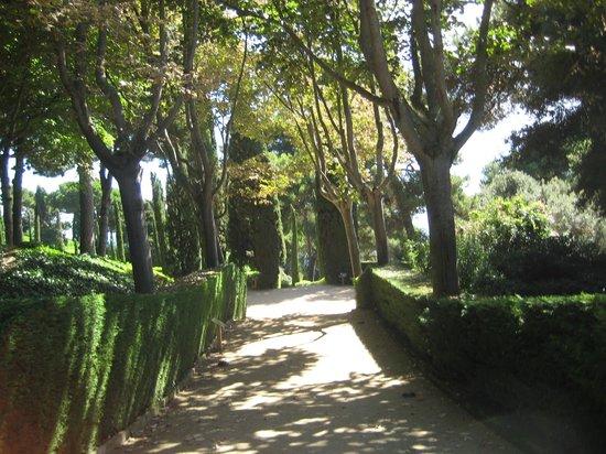 Jardin Santa Clotilde : аллеи