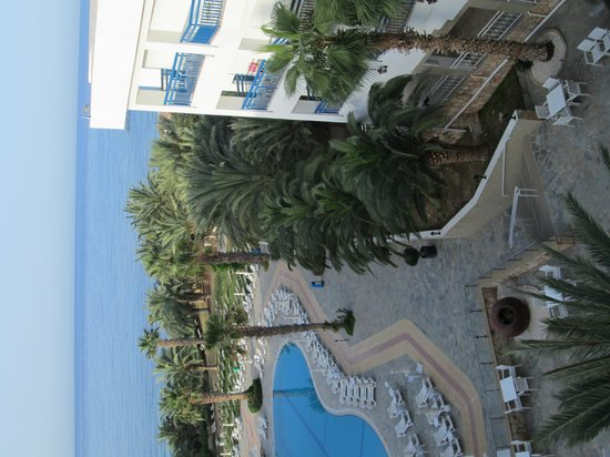 Ascos Coral Beach Hotel: from room