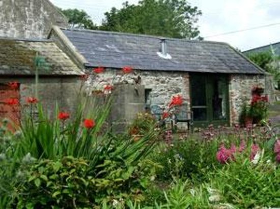Turnip House: The Workshop