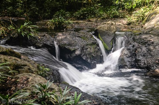 Darien Gap Panama: River in the Heart of Darien Gap, Panama