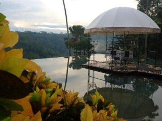 Kupu Kupu Barong Villas and Tree Spa: Kupu Kupu Barong