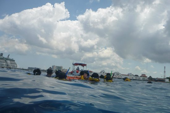 Cozumel Tours - Private Tours : Snorkeling