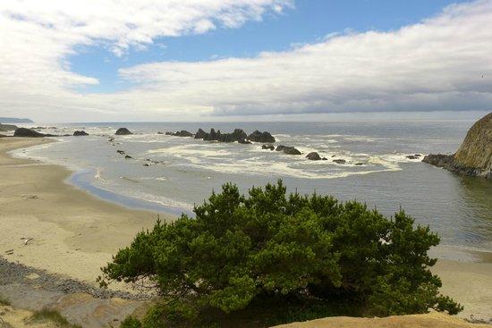 La Quinta Inn & Suites Newport : Seal Rock
