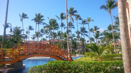 Majestic Colonial Punta Cana: Palms by the pool
