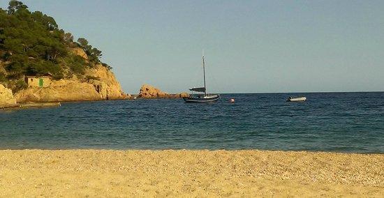 Hotel Tamariu: la plage face à l'hotel