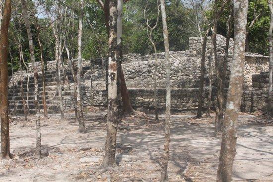 Ruinas de Coba: coba