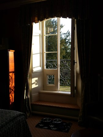 The Falcondale Hotel: Early morning sunshine