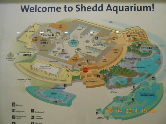 Shedd Aquarium: Map