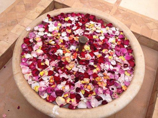 Kasbah Bab Ourika : Petali di rosa