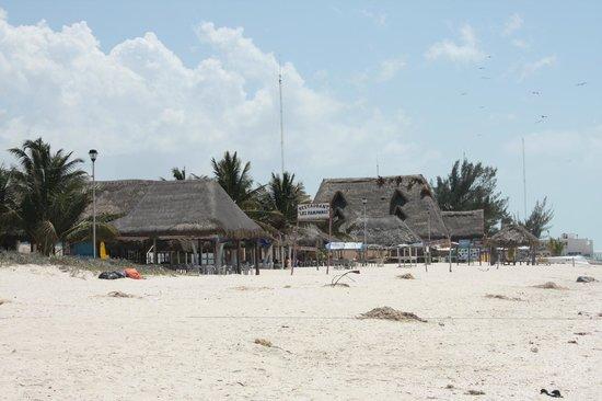 Restaurante Los Pampanos : restaurant de plage