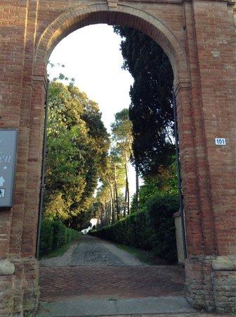 Hotel Garden: Entrance and walkway