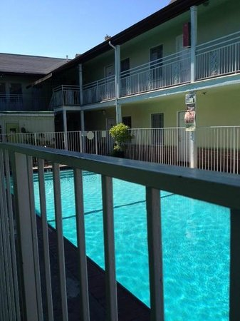 Coral Sands Motel: Swimming pool