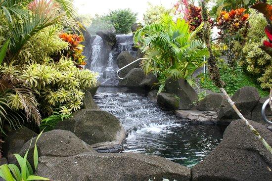 Arenal Kioro: Hot springs were wonderful!