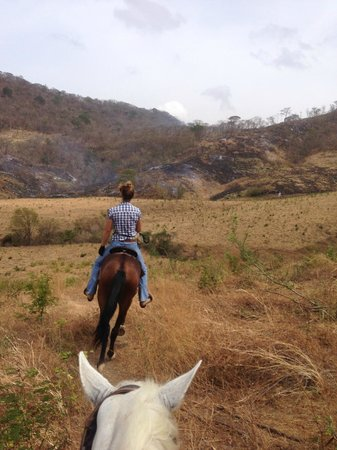 Rancho Chilamate Adventures on Horseback: Wide open fields give room for some warm-up trotting