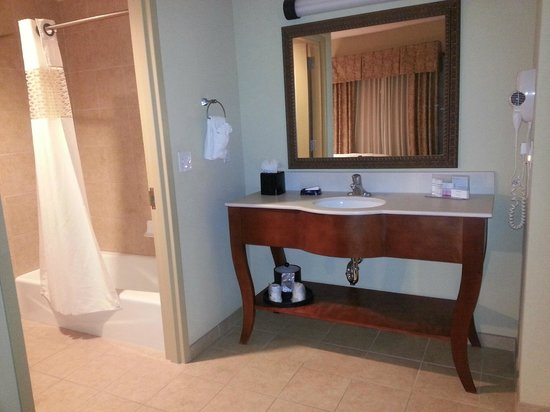 Hampton Inn & Suites Ocala - Belleview: Sink area