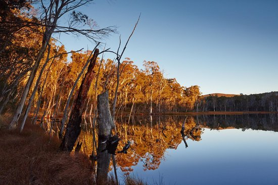 Alpine National Park, Australia: Lake Cobbler on Dusk