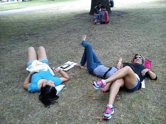 Hyde Park : Depois de muito andar, paradinha para o descanso, essencial!!!!