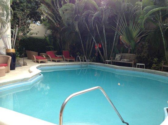 La Casa Del Mar : Pool