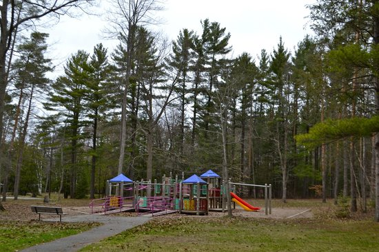 Springwater Provincial Park: Playground in the forest