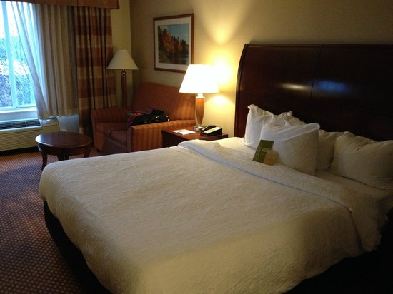 Hilton Garden Inn Chicago / Oakbrook Terrace : King room with love seat which makes into a single bed.
