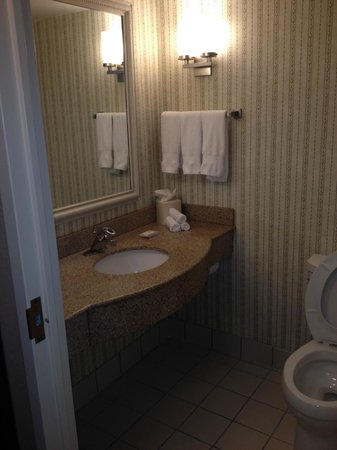 Hilton Garden Inn Chicago / Oakbrook Terrace: Granite counter top in Bathroom