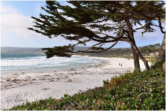 Normandy Inn: Carmel Beach