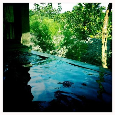 Gending Kedis Villas & Spa Estate : Our pool looking out over the forest