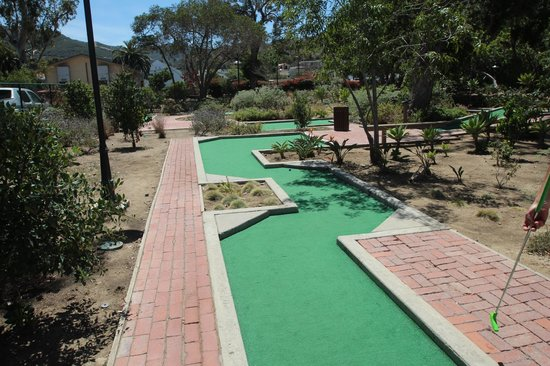 golf gardens picture of golf gardens miniature golf avalon tripadvisor. Black Bedroom Furniture Sets. Home Design Ideas