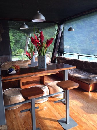 Celeste Mountain Lodge: le coin lounge