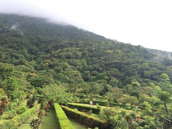 Celeste Mountain Lodge: une des vues paradisiaques un mix entre jardin à la francaise et jungle.