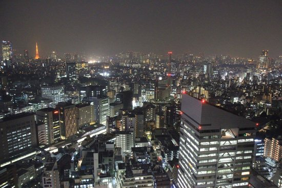 Cerulean Tower Tokyu Hotel: The night time view from our room on the 35th floor