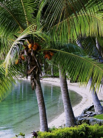 Aore Island Resort: Main beach