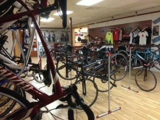 Dr. J's Bicycle Shop: Dr. J's has Road, Hybrid and Mountain Bike Rentals.