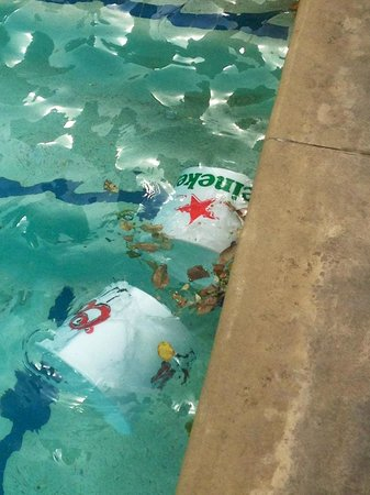 Planet Hollywood Resort & Casino: TRASH IN THE POOL