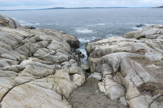 Comfort Hotel Bayer's Lake: Peggy's Cove