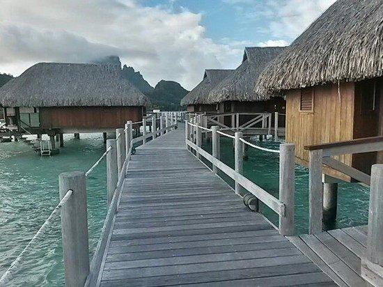 Sofitel Bora Bora Private Island : Road to Mount Otemanu