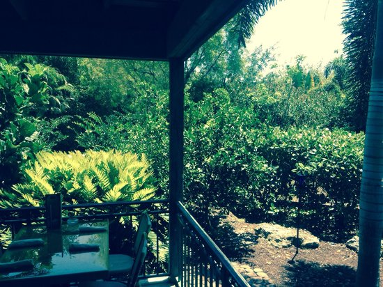 Cip's Place: Lovely outside garden dining on back patio