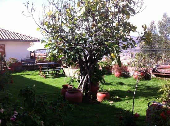 Encantada Casa Boutique Spa: Jardin