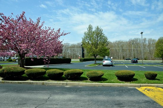 Days Hotel Egg Harbor Township-Pleasantville-Atlantic City: Hotel Parking Lot in Spring (aka, view from the window)