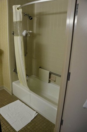 Days Hotel Egg Harbor Township-Pleasantville-Atlantic City: Handicapped Bathroom
