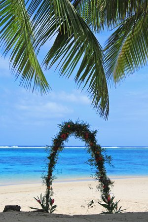 Palm Grove : Wedding