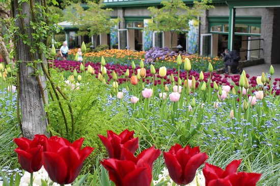 The Butchart Gardens: Couour everywhere