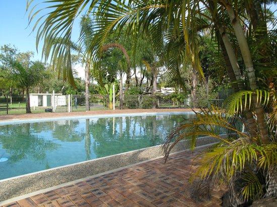 Byron Holiday Park : Pool
