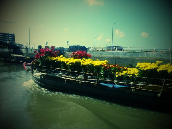 Mekong Delta Private Day Tour: mekong morning